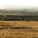 View From Thornton Farm